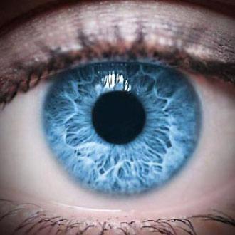Iris de l'oeil humain