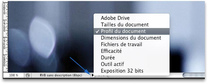 Menu -Profil du document- de la barre d'état de Photoshop