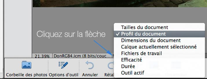 Choix du profil du document de Photoshop Elements